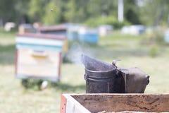 Dymi dla pszczół dymić z roju Narzędzie dla dymić pszczoły z domu Beekeeping naturalny zdjęcia royalty free
