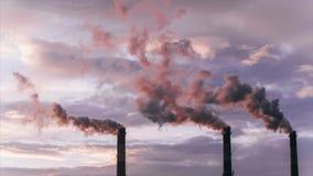 Dymi od wielkich przemysłowych drymb przy świtem, zanieczyszczenie środowiska upływ zbiory wideo