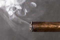 Dymienie cygarowy nikotynowy nałóg obraz stock