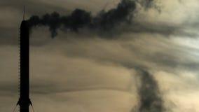 Dymna drymba zbiory