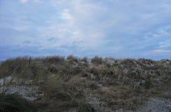 Dyn av kusten för baltiskt hav i nordlig Tyskland Arkivbilder