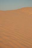 Dyn av sand royaltyfria foton