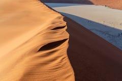 Dyn i gömda Vlei i den Namib öknen Royaltyfri Bild
