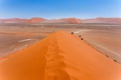 Dyn 45 i sossusvleien Namibia, beskådar uppifrån av en dyn 45 i sossusvleien Namibia, sikt uppifrån av en dyn Royaltyfri Bild