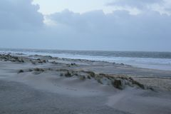 Dyn med gräs på kusten av Nordsjö i Zeeland i Nederländerna arkivbild