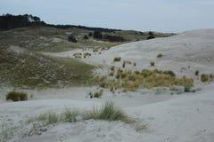 Dyn nära kusten av Nordsjö i Zeeland arkivfoto