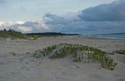 Dyn och havet i Palanga Arkivbild