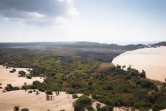 Dyn och skog på de Bazaruto öarna Royaltyfria Bilder
