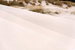 Dyn på Amrum Arkivbilder