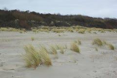 Dyn på Nordsjön royaltyfri bild