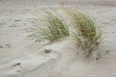 Dyn på Nordsjön arkivbild
