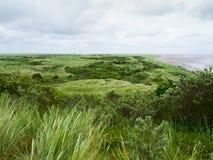 Dyn på ön av Ameland Royaltyfri Fotografi
