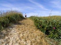 dyn som är gräs- över sandspår Royaltyfri Foto