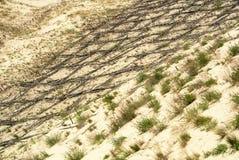 Dyn som skyddar träkonstruktion över sanden på naturligt, parkerar av Curonian spottar fotografering för bildbyråer