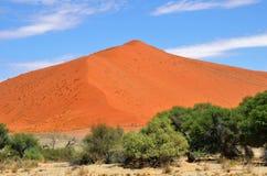 1 dyn Sossusvlei Namib Naukluft nationalpark, Namibia Arkivbild