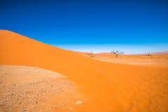 Dyn 45, Sossusvlei, Namib-Naukluft nationalpark, Namibia Royaltyfri Fotografi