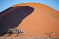Dyn 45, Sossusvlei nationalpark, Namibia royaltyfri foto