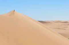 Dyn 7, Walvis fjärd, Namibia Royaltyfri Bild