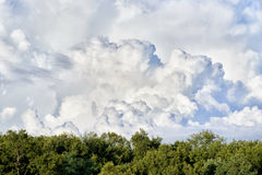 Dynamic cloudy sky Royalty Free Stock Image