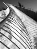 Dynamic Curve. Beautiful fence at the mueum Stock Image