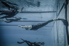 Dynamic With Fins (DYN) Performance from Underwater Royalty Free Stock Photos