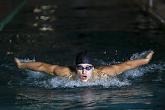 Dynamic and fit swimmer in cap breathing performing the butterfl Stock Photos