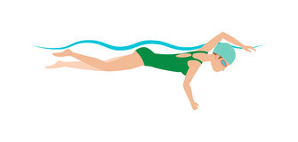 Dynamic and fit swimmer in cap breathing performing butterfly stroke pool sport vector illustration. Royalty Free Stock Photo