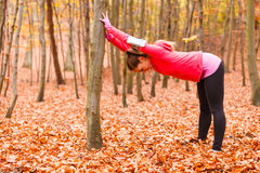 Dynamic girl stretching in forest. Stock Photography