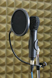 Dynamic Microphone and Pop Shield. Dynamic microphone on stand with a pop shield Royalty Free Stock Images