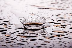 A dynamic splash of water. Forming a crown Royalty Free Stock Photos