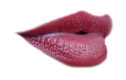 dynamiczny usta Fotografia Stock