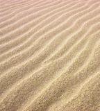 dynamiczny wydm wysokiego zasięgu piasku obrazy royalty free