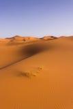 dynamiczny wydm wysokiego zasięgu piasku Obraz Stock