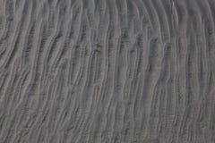 dynamiczny wydm wysokiego zasięgu piasku Fotografia Stock