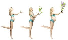 Dynamique de belle blonde de grossesse Image stock