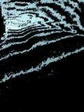 dynamisch, 3D, Streifen, Zebra lizenzfreie abbildung
