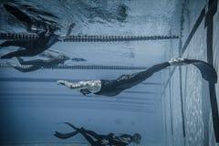 Dynamisch met Vinnen (dyne) Prestaties van Onderwater Royalty-vrije Stock Foto's