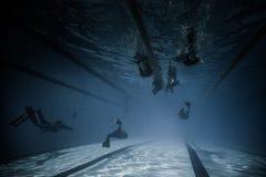 Dynamisch mit Leistungs-breiter Unterwasseransicht der Flossen-(Dyn) Stockfotografie