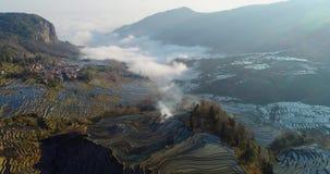 Dynamische mist over de gebieden van het rijstterras stock video