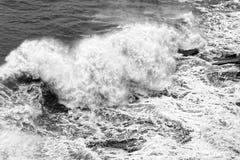Dynamische zwart-witte golven Royalty-vrije Stock Foto