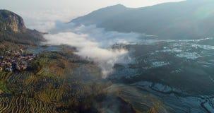 Dynamisk mist över risterrassfält stock video
