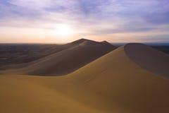 Dyner i Gobien deserterar, Mongoliet royaltyfri foto