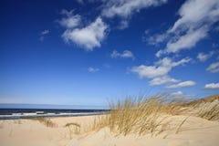 dyner near sandhavet till Arkivfoton