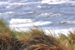 Dyner och hav fotografering för bildbyråer
