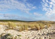 Dyner på atlantisk kust av Frankrike Arkivfoto