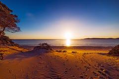 Dyner på solnedgången Arkivfoto