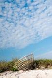 Dyner på stranden Royaltyfri Fotografi