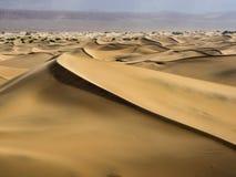 Dynfält i Death Valley Fotografering för Bildbyråer
