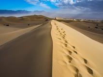 Dynfält i Death Valley Arkivfoto