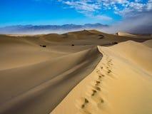 Dynfält i Death Valley Royaltyfri Fotografi